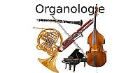 Organologie