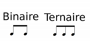 Binaire et ternaire (pulsation)