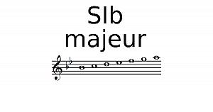 Gamme de Sib Majeur