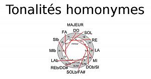 Tonalités homonymes
