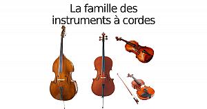 Instruments à cordes
