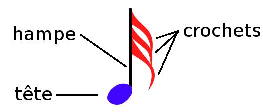 anatomie d'une note de musique