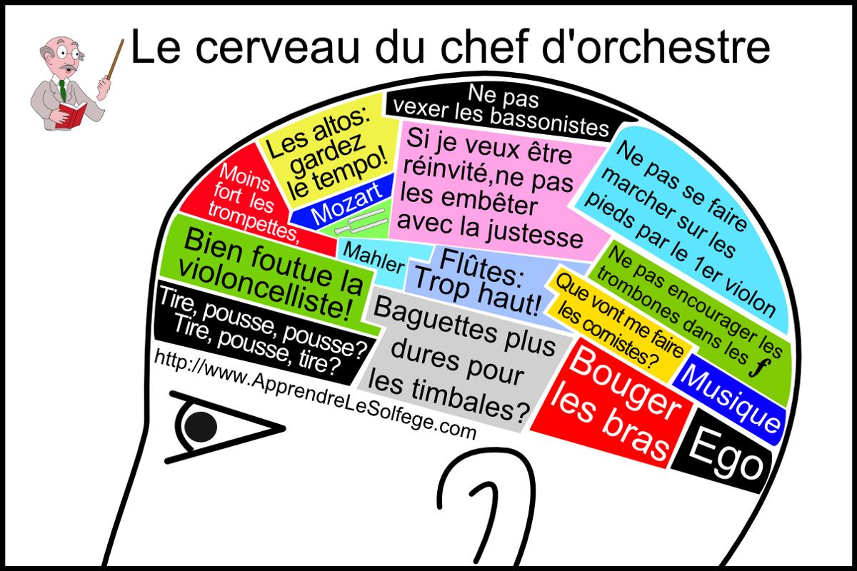 Le Cerveau Du Chef D Orchestre Apprendre Le Solfege