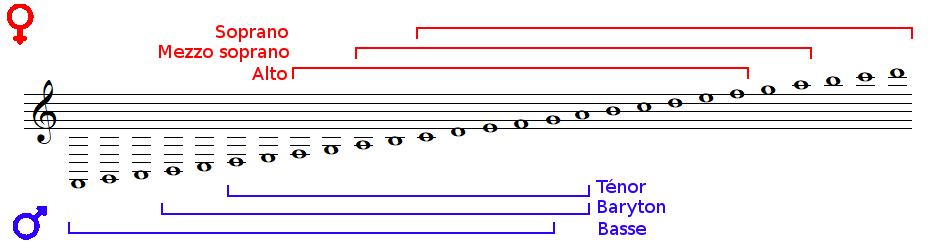 Tessiture des voix et clefs