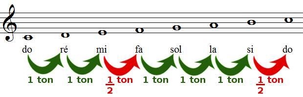 tons et demi-tons dans la gamme de do majeur